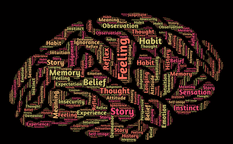The shape of a brain with words describing feelings written within the shape