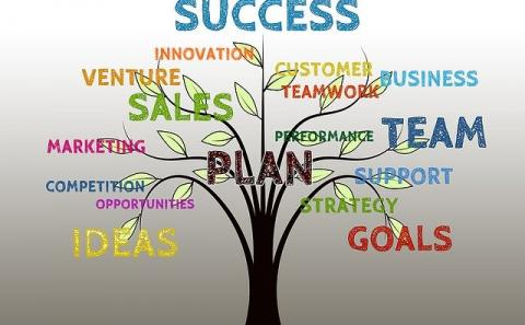 A tree with branches with words like team, goals, skills and others leading to the top of the tree and success