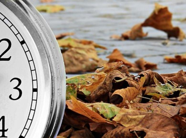 A clock with a background scene of dried up brown leaves on brick pavement